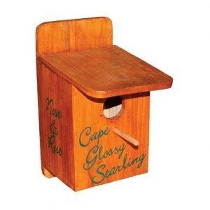 CapeGlossyStarlingNestBox